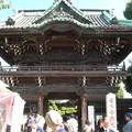 Photos: 葛飾柴又とスカイツリー3
