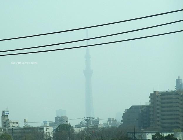 2013年3月10日sun煙霧のスカイツリー。