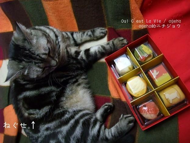 お茶菓子。(2014元旦)