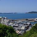 写真: 海岸の街並(汽船乗り場から)