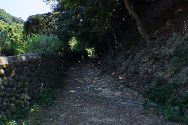 Photos: 島の道
