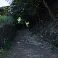 写真: 島の道