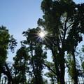 大和田公園にて02