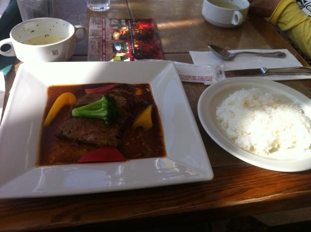 【SPARK】牛肉のヴァイツェンビール煮
