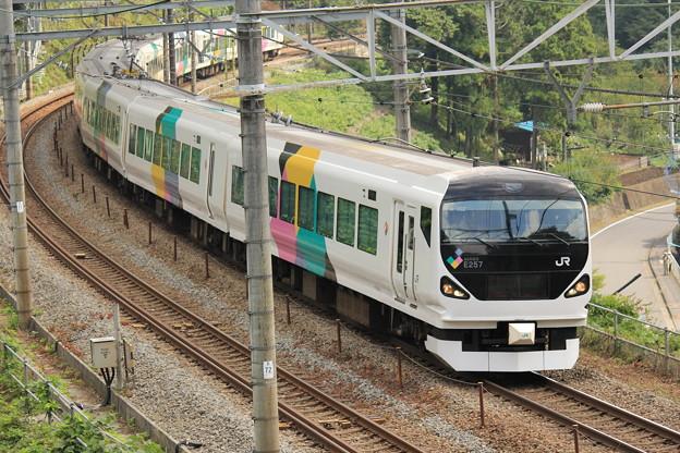 JR東日本E257系(お召し列車 予備)