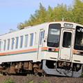 Photos: JR東海キハ11形
