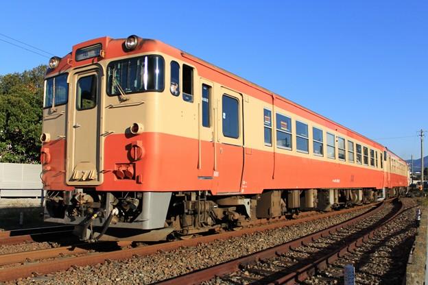 Photos: JR東海キハ48形