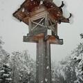 Photos: 雪の神宮 その2