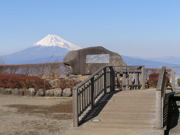 Photos: 達磨山富士