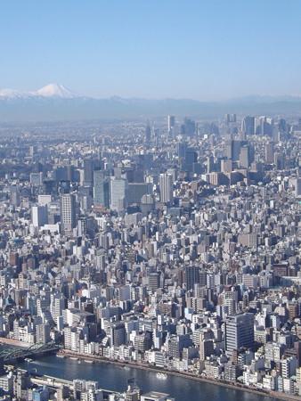 これが東京と富士だ