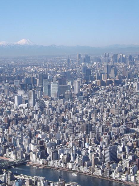 写真: これが東京と富士だ