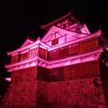 ピンクリボン福知山城