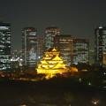 オレンジリボン大阪城