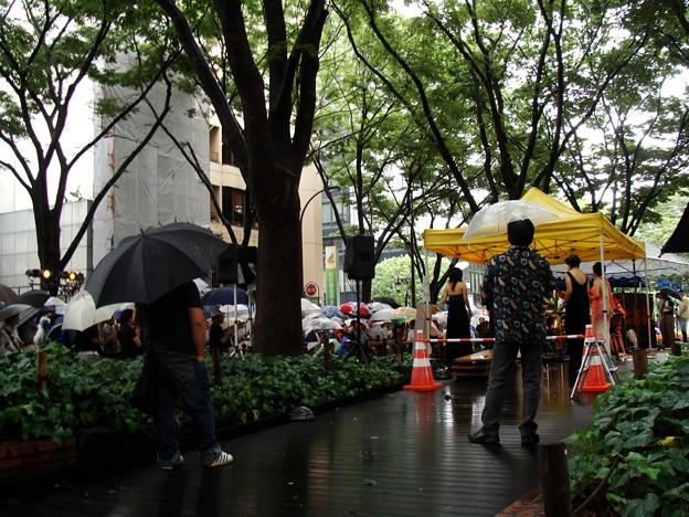 傘さす観客