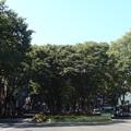 Photos: 平日午前 定禅寺通り