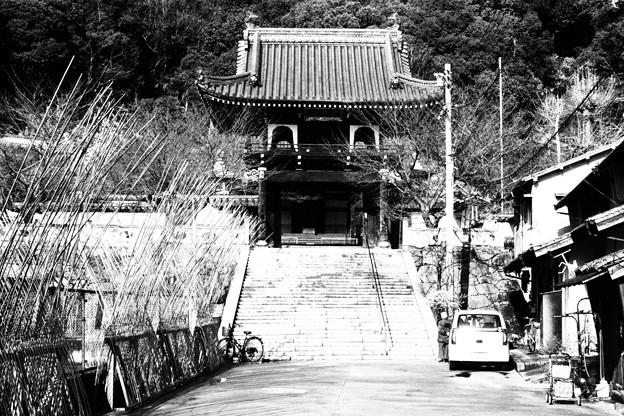照蓮寺 白黒撮影