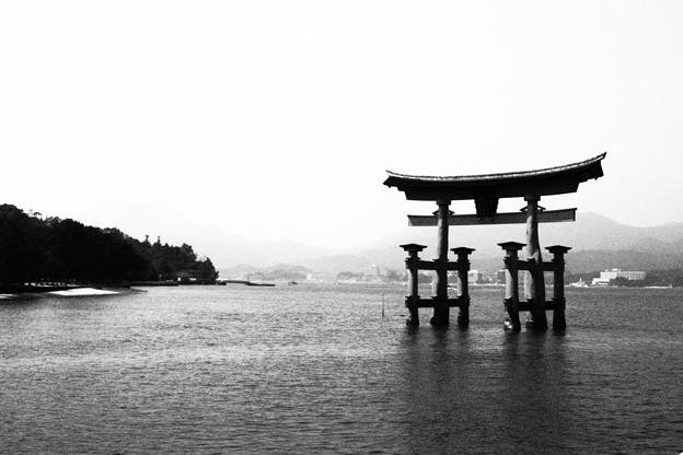 宮島 厳島神社 白黒撮影
