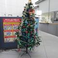 函館駅クリスマスツリー2