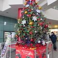 函館駅クリスマスツリー6