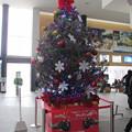 函館駅クリスマスツリー9