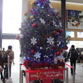 函館駅クリスマスツリー14