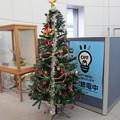 函館駅クリスマスツリー17