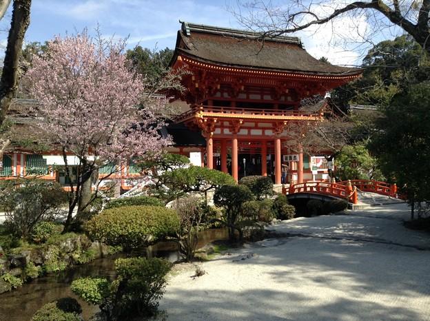 1401-上賀茂神社2