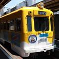 Photos: 久々の阪堺線です