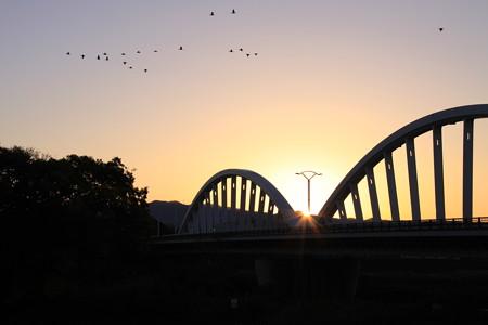 日の出と川鵜