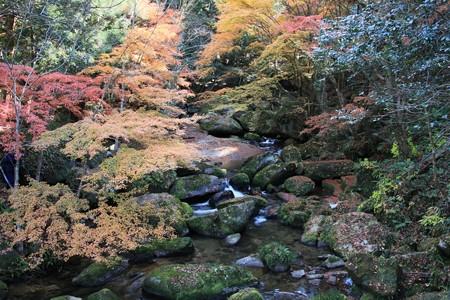 王滝渓谷:王滝川の紅葉