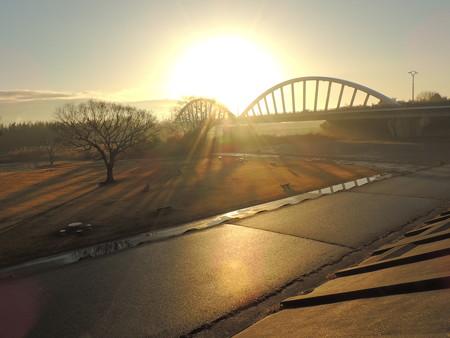 矢作川河川敷の朝の光
