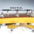 DSC05547のコピー