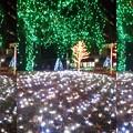 Photos: 京セライルミネーション(3D)II