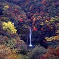 写真: 駒止の滝・栃木