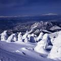 写真: 壮大な樹氷の世界