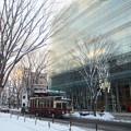 写真: 凍りつく杜の都