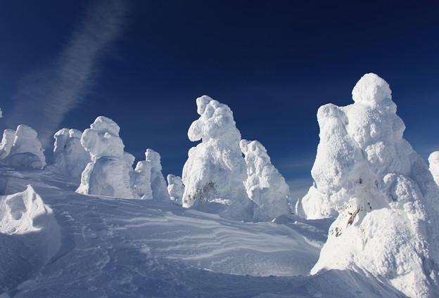 Photos: 樹氷の世界