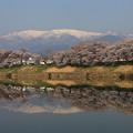 Photos: 桜川の詩