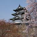 弘前城・天守閣