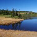 写真: 静寂の中の八幡沼