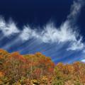 彩りと流れる雲