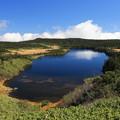 八幡沼絶景