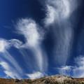 吹き上がる雲