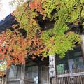秋の神護寺訪ねて