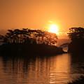 Photos: 輝く太陽