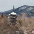 山中に佇む五重塔