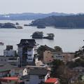 写真: 麗観の松島