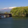 新緑の釜房湖