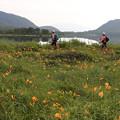 写真: 高原の雄国沼