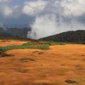 写真: 草紅葉の夢景観